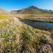 Stock Photo: West Fjords