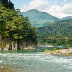 Japanese landscape — Stock Photo
