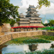 Stock Photo: Matsumoto castle
