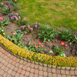 Ornamental garden — Stock Photo #26579879