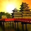 Matsumoto castle — Stock Photo #31581615