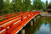 Japanese Bridge — Stock Photo