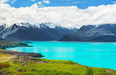 Lake Pukaki — Stock Photo