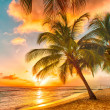 Barbados — Stock Photo #40676241