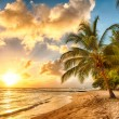 Barbados — Stock Photo #40676593