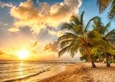 Barbados — Fotografia Stock
