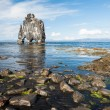 Hvitserkur — Stock Photo #41371533