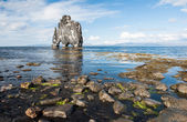 Hvitserkur — Stock Photo