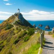 Nugget Point — Stock Photo #42125991