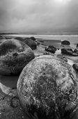 Moeraki boulders — Stock fotografie