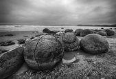 摩埃拉奇巨石 — 图库照片