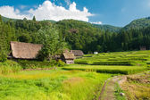 Ogimachi village — Foto Stock