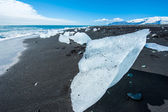 Beach with icebergs — Stockfoto