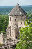 Castle in Cesis — Stock Photo