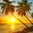 Barbados — Stock Photo #48787769