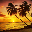 Barbados — Stock Photo #48787773