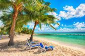 Barbados — Stockfoto