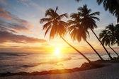 Barbados — Zdjęcie stockowe