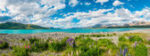 Lake Tekapo — Stock Photo
