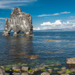Hvitserkur — Stock Photo #50268337