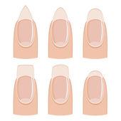 Nail shapes — Stock Photo
