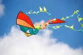 Colorful kite — Stock Photo
