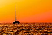 Catamaran sailing at sunset — Stock Photo