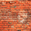 Old red Brick wall Background — Stock Photo