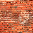Old red Brick wall Background — Stock Photo #12998753