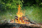 Bonfire campfire fire summer forest nature fire — Stock Photo