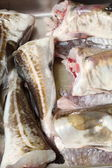 Cod fish - fish fillets — Stock Photo