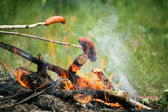 Bonfire campfire fire Flames grilling steak BBQ — Stock Photo