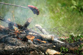 Bonfire campfire fire Flames grilling steak on the BBQ — Stock Photo