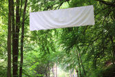 Blank white board banner green trees — Stock Photo