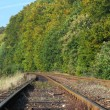 Rail Road Tracks — Stock Photo #26286793