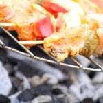 Bonfire campfire fire Flames grilling steak BBQ — Stock Photo #26287095