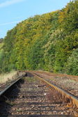 Rail Road Tracks — Stock Photo