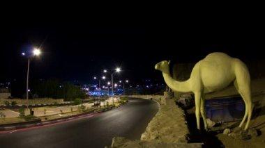 Estrada de noite com camelo — Vídeo stock
