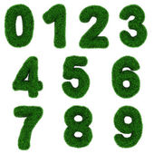 Grass numbers — Stock Photo