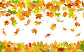 Seamless autumn leaves — Stock Photo