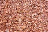 棕色的石头可 — 图库照片