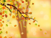 Autumn branch — Stock Photo
