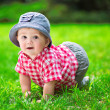 Cute baby crawling in the grass — Stock Photo