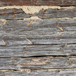 Wood patterns — Stock Photo