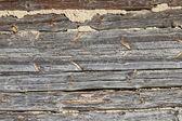 Padrões de madeira — Foto Stock