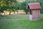 Viejo edificio de madera — Foto de Stock