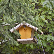 Bird feeder — Stock Photo #14029125