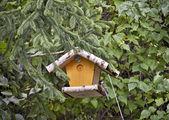 Bird feeder — Stock Photo