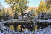 A primeira neve — Foto Stock