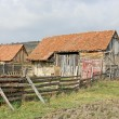 Stock Photo: Old farm